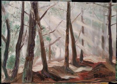 Llums de bosc